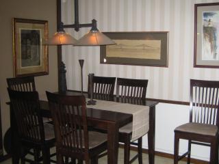 Quiet, close-in Minneapolis suburb - Edina vacation rentals