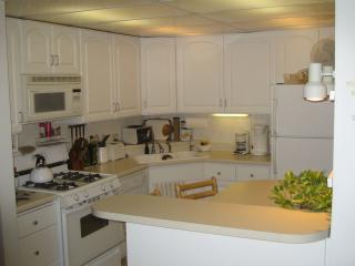 Quiet, close-in Minneapolis suburb - New Hope vacation rentals