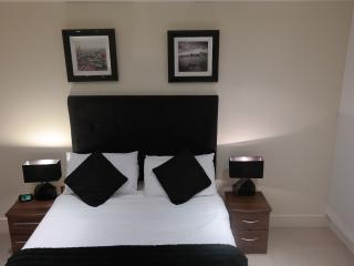 Denison house one bedroom Apartment #528 - London vacation rentals