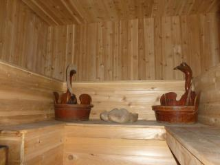 SPACIOUS  HOUSE with WOOD-FIRED SAUNA in by owner! - Monticello vacation rentals