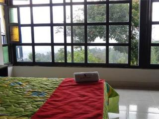 Pool, Jacuzzi, BBQ, Fresh Air & Tranquility - Envigado vacation rentals
