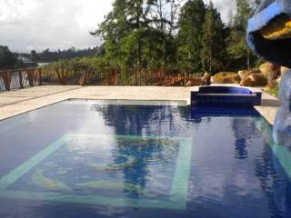 Nice 6 bedroom Villa in Guatape - Guatape vacation rentals