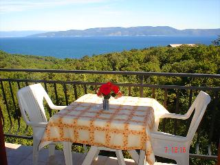 DRENJE LARA(1036-2429) - Ravni vacation rentals