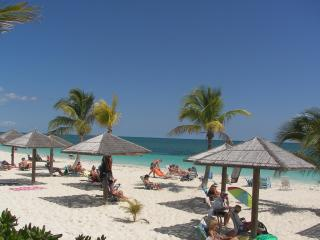 Ocean Front Hotel On White Sand Beach - Freeport vacation rentals