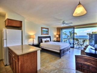 Lahaina Shores #425 - Lahaina vacation rentals