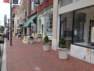 Spacious Baltimore Apartment - Central Maryland vacation rentals