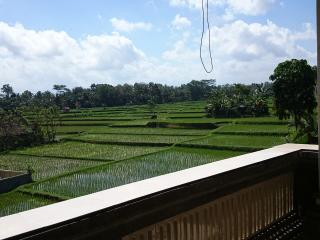 Indra Santi 2 brm house, Eat Pray Love Rice Fields - Ubud vacation rentals