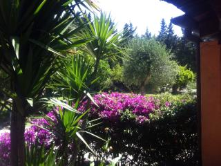 Accattivante villa con piscina - Nurachi vacation rentals