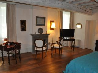 Nice Bed and Breakfast with Internet Access and A/C - Borgoforte vacation rentals
