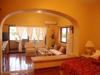 Beautiful loft within ocean front complex - San Jose Del Cabo vacation rentals