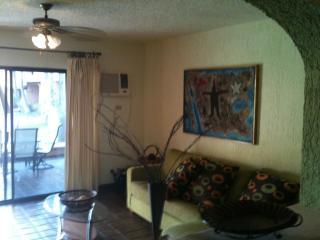 Comfortable 2 bedroom ground level condo - San Jose Del Cabo vacation rentals