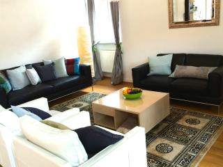 Best located Luxury Apartment with Terrace - Heidelberg vacation rentals