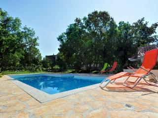Holiday home with private swimming pool in Croatia - Split-Dalmatia County vacation rentals