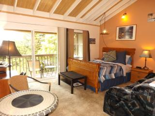 Serene Studio, free parking, rec. center, views! - Portland vacation rentals