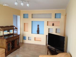 Lux apartments in center of Vilnius - Vilnius vacation rentals