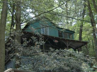 Vintage Cottage in the Woods - Grantville vacation rentals
