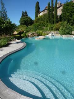 Mas de l'Aire, Provencal Mas in the Cevennes - Monoblet vacation rentals