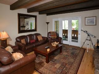 Enjoy this beautiful and affordable vacation condo in Vail located at 1839 Meadow Ridge Road. - Vail vacation rentals