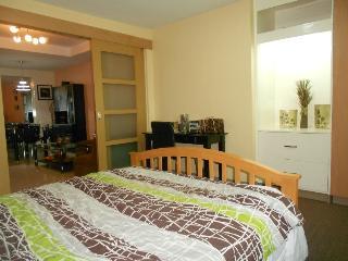 Comfy 1 Bedroom Apt. with Kitchen - Quezon City vacation rentals
