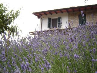 Nice Bed and Breakfast with Central Heating and Parking - Vigoleno vacation rentals