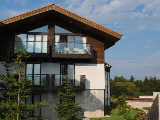 Comfortable 4 bedroom Borovets Ski chalet with Internet Access - Borovets vacation rentals