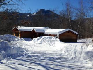 Expanded Cabin facing Hunter Mountain in NY - Hunter vacation rentals