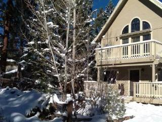 Share Our Joy #1390 ~ RA46023 - Big Bear City vacation rentals