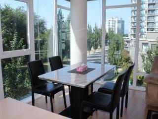 New 3 BD/2BA Air-condition Apt at Central Richmond - Richmond vacation rentals