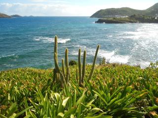 "villa "" les 2 poissons "" : la villa du bien être - Colombier vacation rentals"