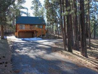 Living Log Cabin #1494 ~ RA46093 - Big Bear City vacation rentals