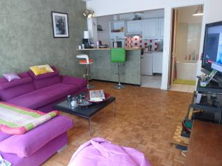 Appartement 2 pièces - Boulogne-Billancourt vacation rentals