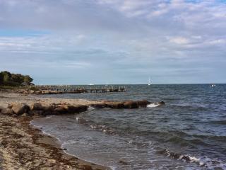 Island Retreat, Free Wifi - Vineyard Haven vacation rentals