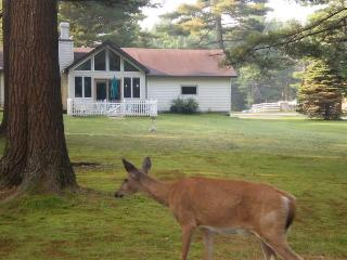 Beautiful get a way in the Adirondacks Golf, Hikin - Old Forge vacation rentals