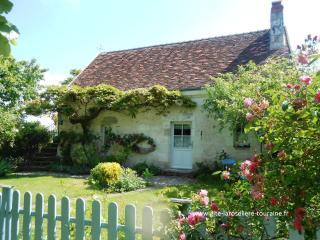 Gîte de charme près de Loches La Roselière - Loches vacation rentals