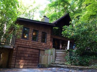 Cabin in Asheville Forest-15 min from Downtown! - Asheville vacation rentals