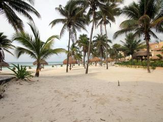 DIRECT SANDY BEACHFRONT 3 BR WIFI GRILL AMAZING!! - Puerto Aventuras vacation rentals