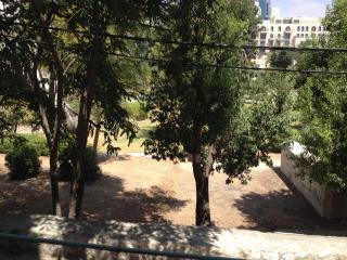 Great Synagogue Luxury Kosher Apt - Jerusalem vacation rentals