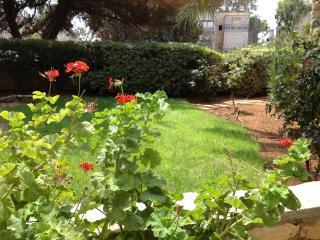 Off Emek Luxury Kosher Beautiful! - Jerusalem vacation rentals