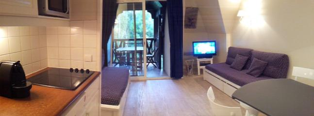 Nice Condo with Internet Access and Dishwasher - Deauville vacation rentals