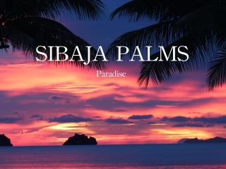 Sibaja Palms Sunset Beach Luxury Villa Special - Surat Thani vacation rentals