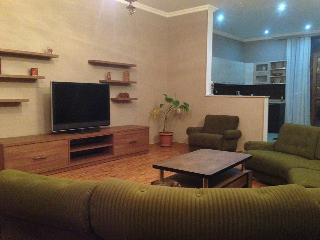 Apartment in the Center of tbilisi - Tbilisi vacation rentals
