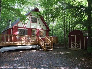 COZY & CHARMING POCONO CABIN NESTLED IN THE WOODS. - Pocono Lake vacation rentals