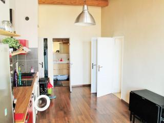 Nice apartment 67m2 in lyon croix rousse - Lyon vacation rentals