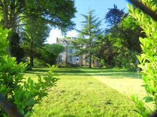 GITE-CHÂTEAU_1h from Paris (France) - Courtenay vacation rentals