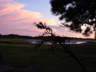 Gorgeous Wellfleet waterfront contemporary - Wellfleet vacation rentals