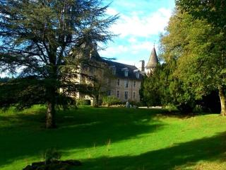 Comfortable 8 bedroom Argentat sur Dordogne Chateau with Internet Access - Argentat sur Dordogne vacation rentals