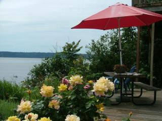 180* view waterfront with  Mt. Rainier & Olympics - Fox Island vacation rentals