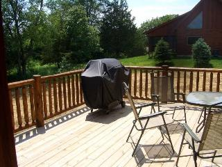 Luxury 3.5BR Log House - Near Lake Galena - Illinois vacation rentals