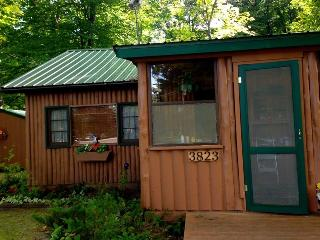 Adorable Cabin -Interlochen CLOSED UNTIL MAY 2017 - Grawn vacation rentals