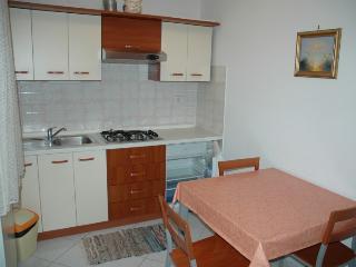 Dajla - Novigrad(1244-2991) - Karigador vacation rentals